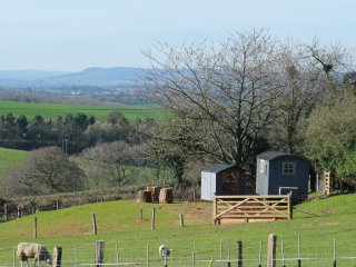 Luxury Shepherds Hut Hereford