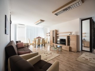 BELVEDERE APARTMENT - YOUR CENTRAL PERFECT LOCATION!, Cluj-Napoca