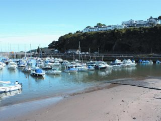 Saundersfoot harbour with boat trips leaving daily in the summer months.
