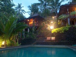 Unique wooden villa in the jungle at DD Ubud Villa