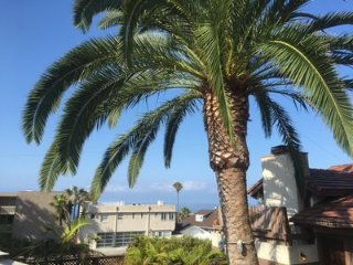 Fantastic Village Location. 300 Steps to Beach. Best Outdoor Area You Can Find!, Laguna Beach