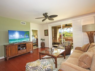 Pili Mai 15J Awesome 3bd gorgeous interiors A/C, Poipu