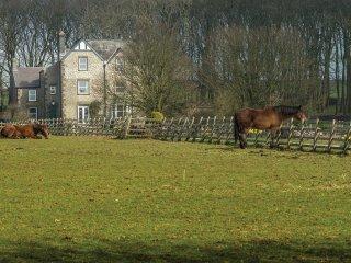 PK926 Cottage in Taddington, Bakewell