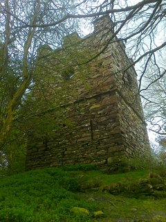 Hike up to the secret Castle! Finsthwaite Tower is at the top of the hill behind Swan View