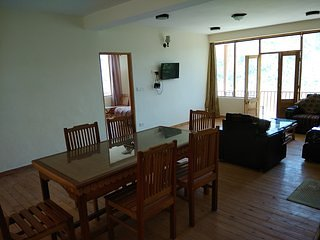 Room 2 Well furnished and Peaceful 1BHK Cottage, Manali