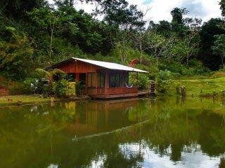 Cabaña de Lago-La Fortuna, La Fortuna de San Carlos