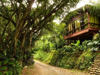 Arenal Wood House. La Fortuna