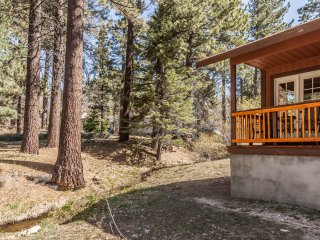 Eagle Cabin- Single story, log furniture, forest & stream views, lake swim pass!