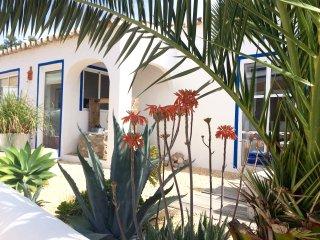Casa da Aldeia/ vila Primaveira