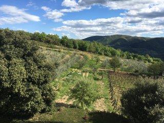 Il Giaggiolo del Chianti with Jacuzzi