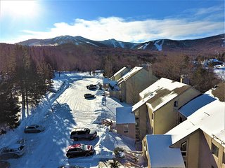 Whiffletree Condo Unit D8 ~ RA147210, Killington