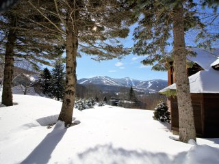 Highridge Condominium Unit F1 ~ RA147208, Killington