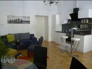 Charming Viennese Apartment near City Center