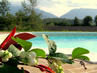 Castellonesto - Appartamento ROSE (4+1 posti) o GIRASOLI (4+1 posti)