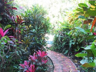 Tropical garden path leading to the pool