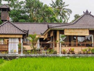 Devi's Place Ubud- spacious peaceful 3 BDR Villa Shanti - great views & internet