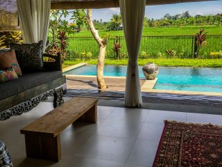 Devi's Place Ubud - luxurious private Villa Mandala with stunning views
