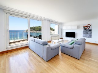 Amazing apartment in first line of La concha beach