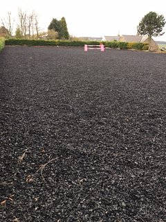 The all weather riding surface within the grounds
