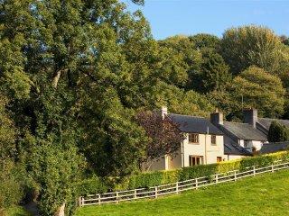 Pentrebach Cottage (PENTR), Llandovery
