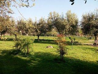 Casa Zafferano nella campagna di Albenga con giardino e barbecue