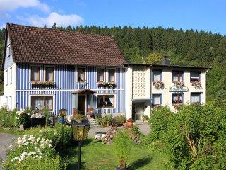 Ferienwohnungen und Gastezimmervermietung im Harz, viel Natur, Walder und Seen