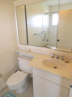 Private bath in twin bedroom suite