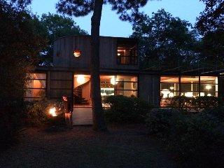 Villa d'architecte au milieu des bois
