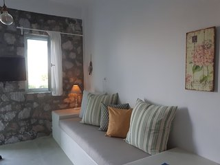 """The Olive Tree"" One-bedroom stunning sea view traditional house in Mandrakia"