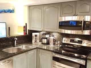 Beautifully renovated kitchen with new stainless GE Profile appliances
