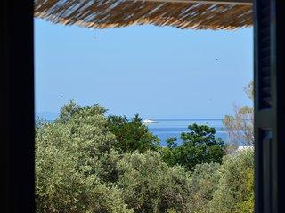 Skopelos apartment sea view B4, Neo Klima