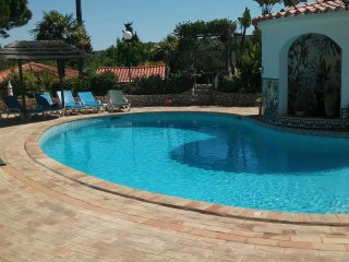 Four beautiful detached two bedroom, two bathroom villas  with a stunning pool