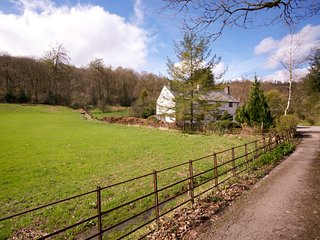 LLH36 Cottage in Satterthwaite, Grizedale