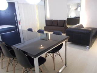 New Big & Spacious 1 Bedroom Apartment  (IV EA)