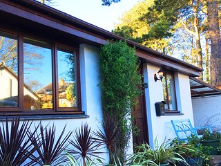 Midwood Cottage with a  fantastic tree house and you can walk to the beach!