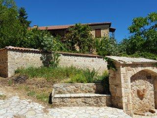 Fabulous stay in rustic Villa Platanus (est. 1840)