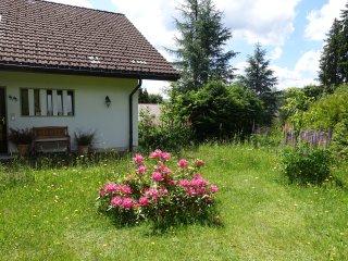 Haus mit Kamin am Waldrand