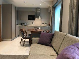 Deluxe two bedroom apartment - Sanctum, Belsize Road, London