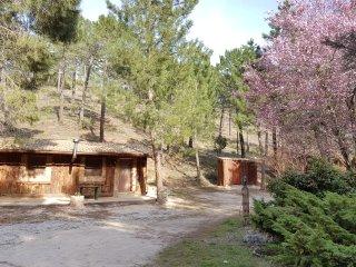 Cabana en El Lagunazo