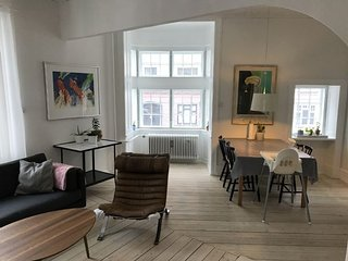 Spacious Copenhagen apartment near Dybboelsbro