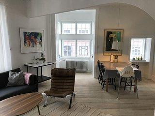 Spacious Copenhagen apartment near Dybboelsbro