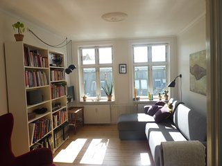 Nice centrally located Copenhagen apartment