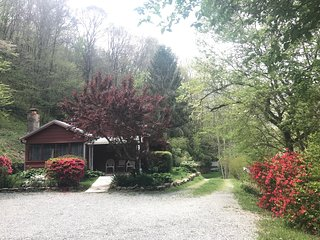 Brevard, NC cottage,  with Bold Stream, and Trout Pond  ,