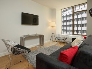 LUXURY-NEW! 1 BR FINANCIAL DISTRICT- SICK DEAL!!!  5188