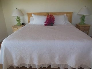 Winter Haven's Hotel Room with a King Bed #4 ~ RA149454