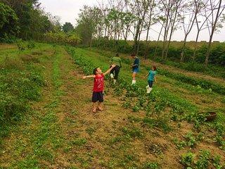 Mama's farmstay Viet Nam