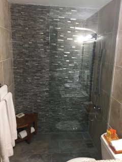 Newly Renovated Guest Bathroom with Luxury Toiletries, Granite countertop.