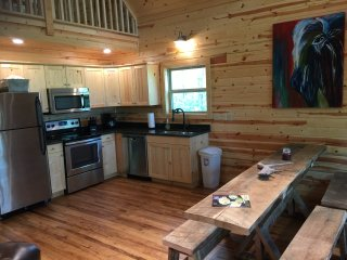 Get away from it all at The Plains Buffalo Cabin! New in April 2017!