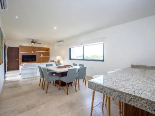 Beautiful and luxurious 3bdr PH in downtown Playa