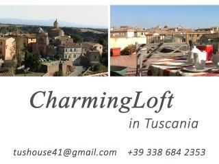 charming loft in tuscania, Tuscania